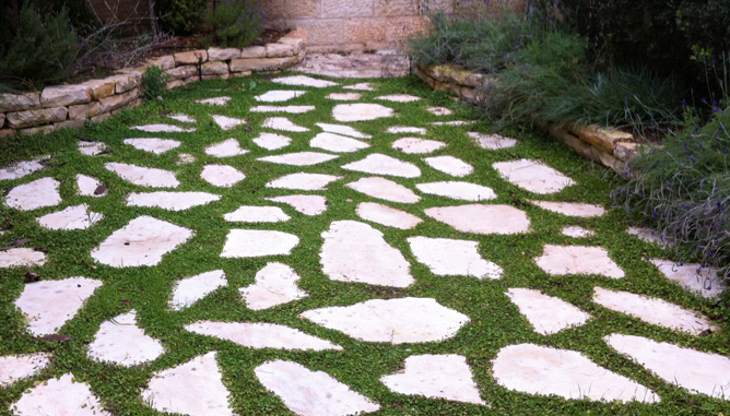 Stepping stones and grass combination
