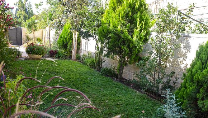 משטח דשא עם גינון שוליים