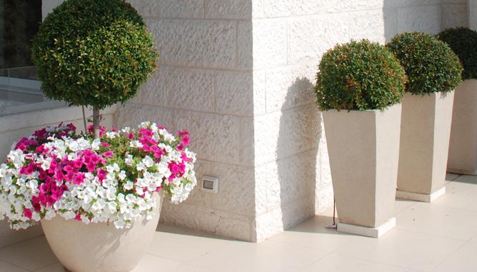 גינון פורמאלי בכדים. פרחים עונתיים המתחלפים בכל עונה ונותנים תחושה מעט שונה בכל פעם