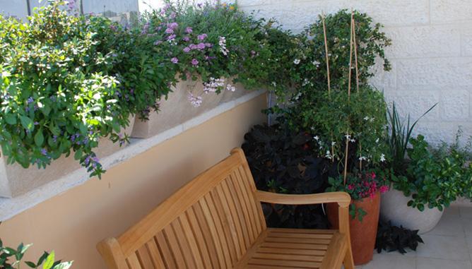 פינת ישיבה עטופת צמחיה בגינת גג