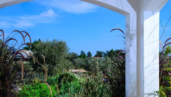 מראה אל הגינה מתוך הכניסה